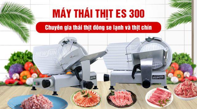 May-thai-thit-es-300