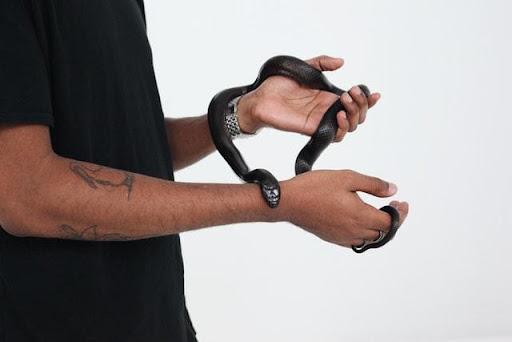 Mơ thấy rắn quấn vào tay nên đánh đề số gì?