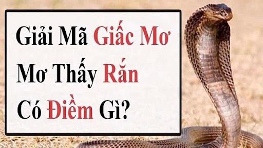 Mơ thấy rắn danh de con gi?